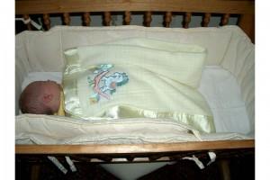 Laurel in the cradle.